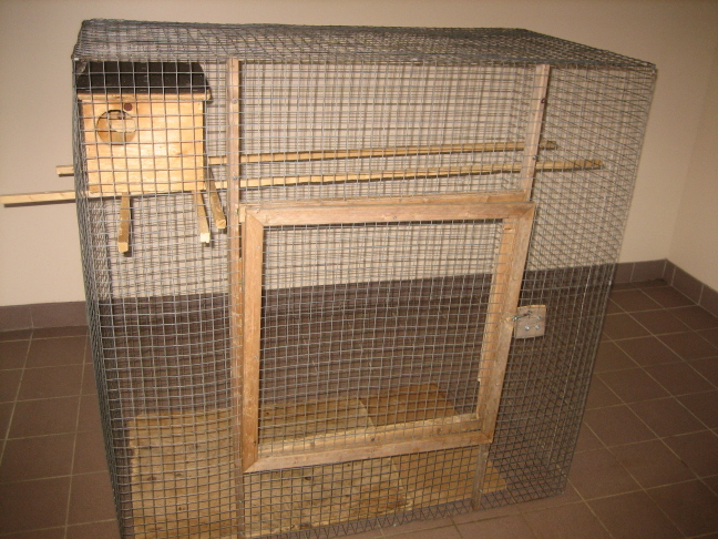 Homemade pet squirrel cage